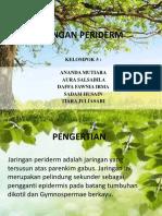 JARINGAN PERIDERM.pptx