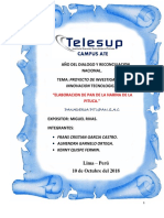 Proyecto Pitupan Completo 2
