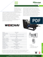 C13b-PAG-x19-20-Motores-Diesel-Weichai-Serie-WD618.pdf