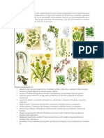 230 plantas medicinales