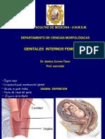 5 - Genitales Femeninos - Dr. Santos Correa