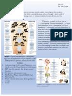 Disease- 90 Second Naturalist