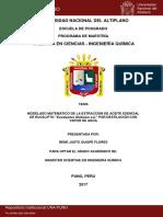 Rene_Justo_Quispe_Flores.pdf