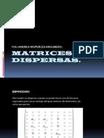 MATRICES DISPERSAS..pptx