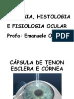 Optometria - Aula 13 e 14 - Cápsula de Tenon, Esclera e Córnea