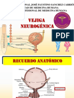 VEJIGA-NEUROGENICA