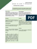 CONSEPTO INVESTIGAR.docx