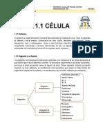 1. La Célula y La Glándula Endocrina