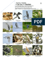 550_aves_del_guaviare_a1.pdf