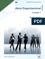 Cultura_Organizacional_Comportamento_Org.pdf