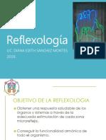 reflexologia 2019