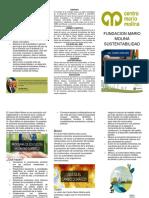 TRIPTICO FUNDACION MARIO MOLINA SUSTENTABILIDAD