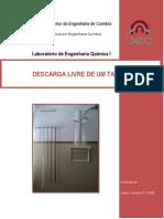 Relatorio-Descarga-Livre.pdf