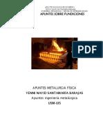 APUNTES_FUNDICIONES_DE_HIERRO_YENNI_NAYI.pdf