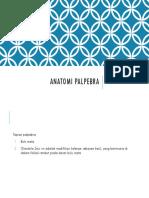 Anatomi palpebra