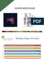 1-Intro-Ácidos nucleicos.pdf