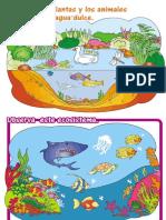 Dibujos Arte Ecosistema