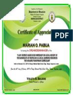 Certificate - organizer.docx