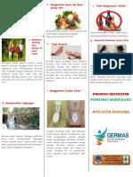Leaflet GERMAS