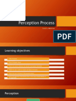 Perception-Process2.pptx