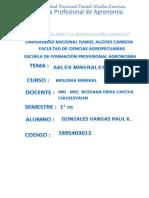 Informe Gonzales