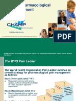 Review WHOPainLadder OpioidsandNonOpioids