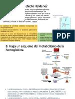 Efecto Haldane y Metabolismo de hemoglobina