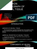 Neural tissues