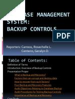BACKUP CONTROLS IT6.pptx
