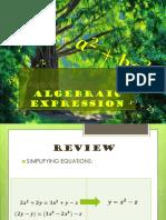 Demo Algebraic Expression