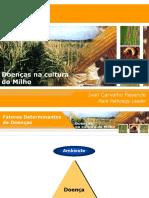 MILHO doencas _Centro.ppt