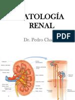 06 Patologia Renal
