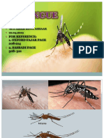 Bio Dengue Ppt