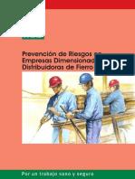 Prev. de Riesgos en empresa Dimensionadora y distribuidora de Fierros .pdf