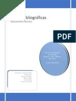 Fichas_bibliograficas.docx