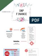 SNP Finance