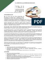 sobreedad-proyecto.docx