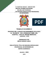 LIC   HERCIA 2019 CORREGIDO_agosto_2019.doc