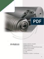 1.IT FLEX C1)