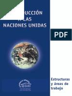 ONU_Areas_Trabajo.pdf