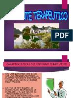 AMBIENTE TERAPEUTICO