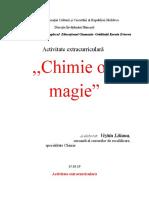 Activitate Chimie Ori Magie