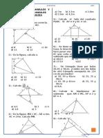 Practica Semejanza Congruencia Triangulos