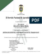 SISTEMA DE GESTION DE LA SEGURIDAD Y SALUD EN EL TRABAJO SG-SST.pdf