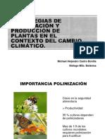 Polinización y medio ambiente