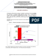 Sarampo Rubeola Protocolo Laboratorial