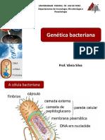 Genética-bacteriana