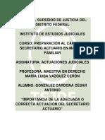 IMPORTANCIA DE LA ADECUADA O CORRECTA ACTUACIÓN DEL SECRETARIO ACTUARIO