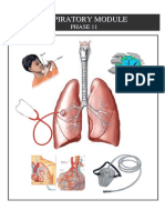2 Respiretory System