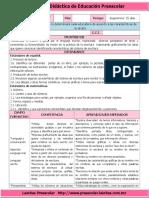 333561202-Situacion-Didactica-Detective-de-Letras.doc